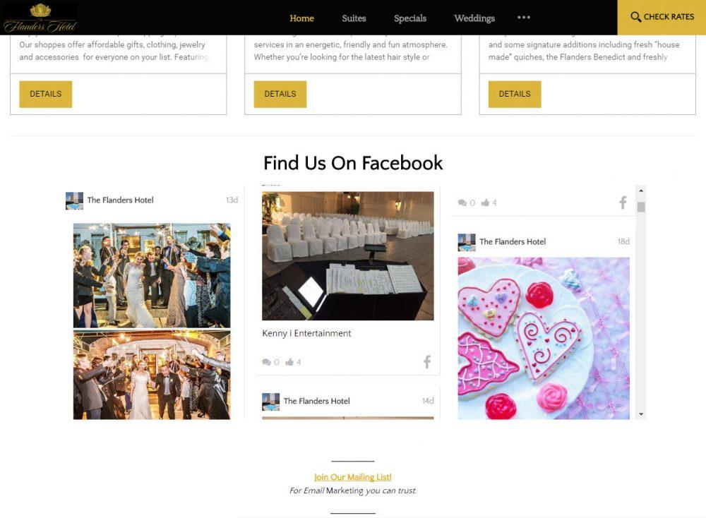 Vizlly website with social media feed