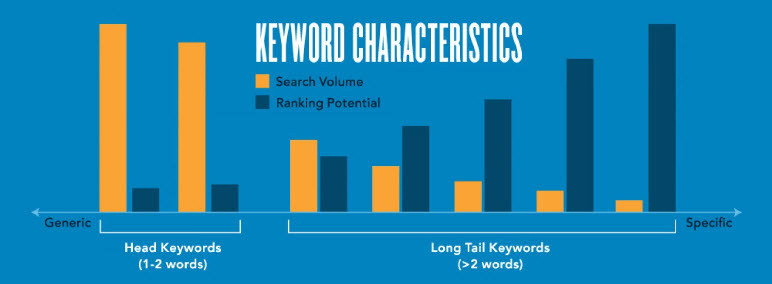 Ranking potential increases as the number of long tail keywords increases